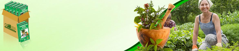 Adquira os 11 Cursos na Área Plantas Medicinais