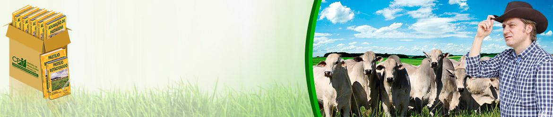 Adquira os 16 Cursos na Área Pastagens e Alimentação Animal