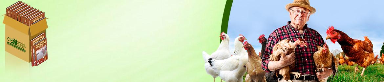 Adquira os 13 Cursos na Área Avicultura