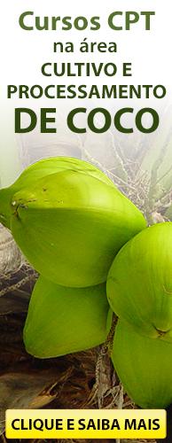 Conheça os Cursos CPT na área Cultivo e Processamento de Coco. Clique aqui.