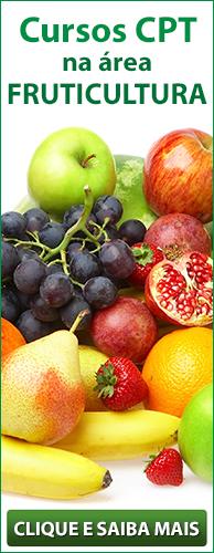 Conheça os Cursos CPT na área Fruticultura. Clique aqui.