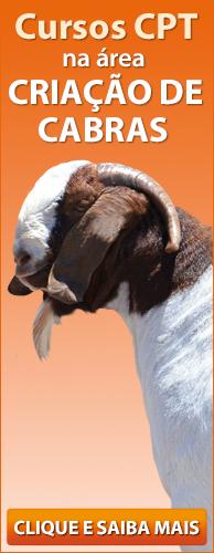 Conheça os Cursos CPT na área Criação de Cabras. Clique aqui.