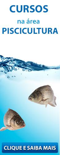 Descubra como se capacitar e obter lucros com a sua Criação de Peixes!