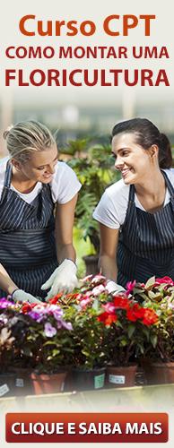 Curso CPT Como Montar uma Floricultura. Clique aqui e conheça!