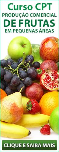 Curso CPT Produção Comercial de Frutas em Pequenas Áreas. Clique aqui e conheça!