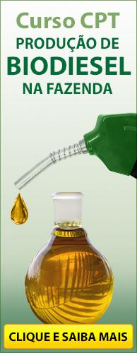 Curso CPT Produ��o de Biodiesel na Fazenda. Clique aqui e conhe�a!