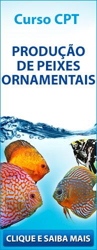 Curso CPT - Produção de Peixes Ornamentais. Clique aqui e conheça!