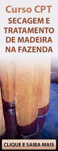 Curso CPT Secagem e Tratamento de Madeira na Fazenda. Clique aqui e conheça!