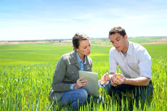 Plataforma de inteligência agrícola otimiza produção