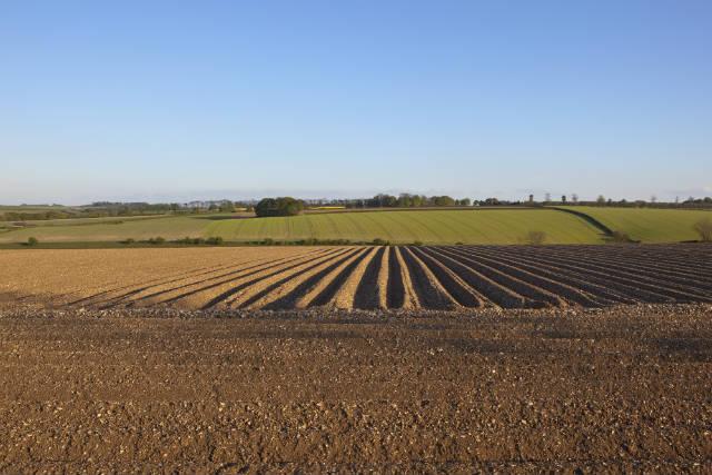 Tecnologia de ponta otimiza preparo do solo e acelera plantio