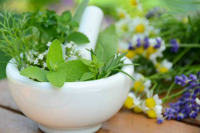 Como usar plantas medicinais corretamente