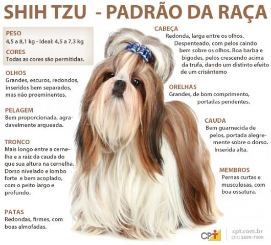 Treinamento doméstico para cães <b>Shih Tzu</b> 2014