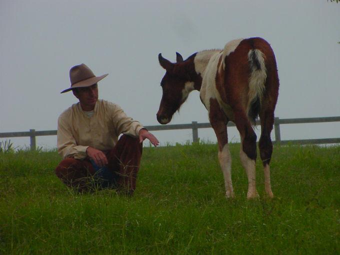Resultado de imagem para homem domando cavalo