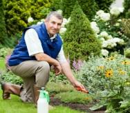 O profissional jardineiro com qualificação adequada destaca-se no mercado
