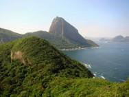 Biomas do Brasil - Mata Atlântica
