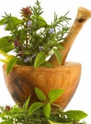 Aprenda Fácil Editora: Plantas medicinais e seus princípios ativos