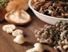 Cogumelos Shimeji e Hiratake, delícias de alto valor gastronômico