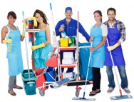 Lei das dom�sticas - Os direitos e as garantias vigentes para os empregados dom�sticos