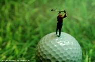 La elección del campo de golf de hierba se debe hacer de acuerdo con el suelo y el clima.
