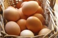 Comercializa��o de ovos: classifica��o, r�tulo, identifica��o e embalagens