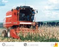 Como planejar a colheita manual e mec�nica do milho
