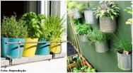 Livro que ensina a criar horta em pequenos espaços é destaque na 23ª Bienal do Livro de SP