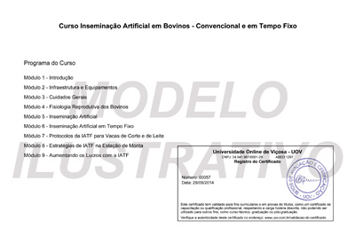 Certificado Verso