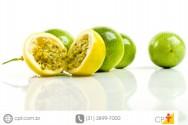 Mudas de Maracuj� - por sementes, em sacolas pl�sticas e em tubetes