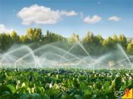 Fertirrigação de pastagem - técnica de grande benefício ao meio rural