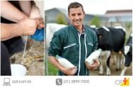 Ordenha e qualidade do leite orgânico