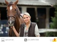 A saúde bucal dos cavalos está na mira dos veterinários