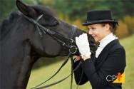 Cavalo crioulo: versatilidade e geração de renda