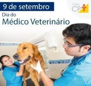 Dia do médico veterinário: o melhor amigo dos animais