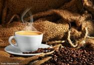 Por que o caf� Gourmet � t�o especial?