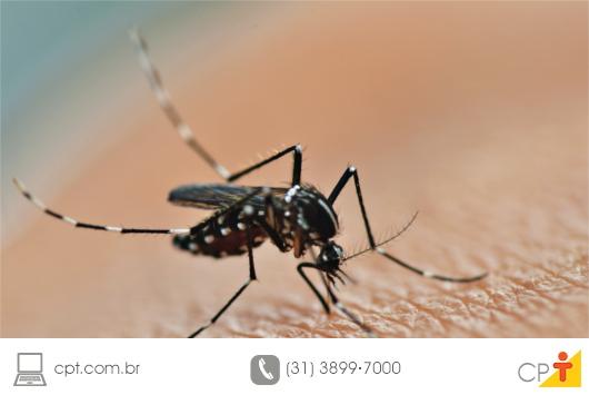 Zika, Chikungunya e Dengue