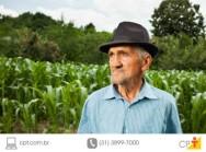Fim do subs�dio � exporta��o beneficia produtores rurais brasileiros