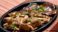 Cogumelo comestível Shimeji - como cultivar