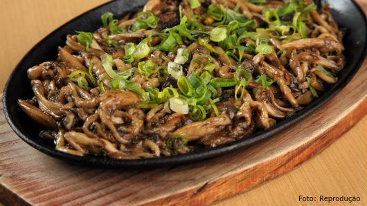 Cogumelos comestíveis fazem bem à saúde? Sim, fazem!