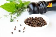 Plantas medicinais que tratam e curam doenças
