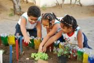 Por que trabalhar a educação ambiental com crianças?