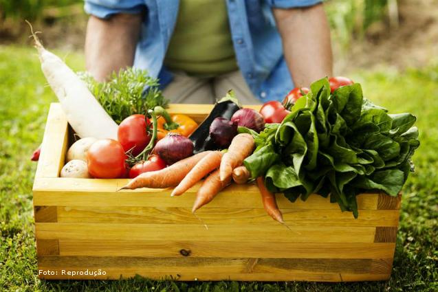 Por que os produtos orgânicos são melhores? - Artigos Cursos CPT