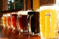 Cerveja: principais tipos e estilos
