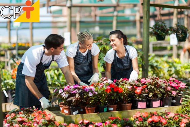 Cresce em 6% ao ano o setor de flores no Brasil   Notícias Cursos CPT