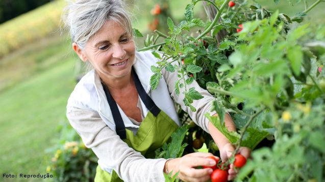 A agricultura orgânica para o agroecossistema   Artigos Cursos CPT
