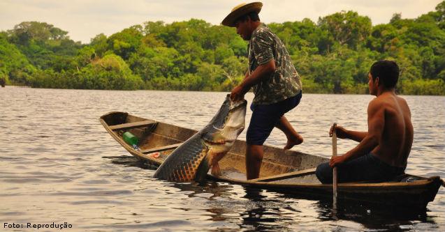 Espécies de peixes de importância econômica   Artigos Cursos CPT