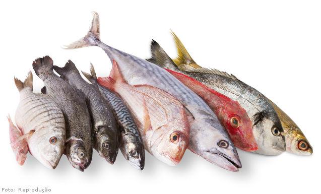 Características desejáveis em peixes comerciais   Artigos Cursos CPT