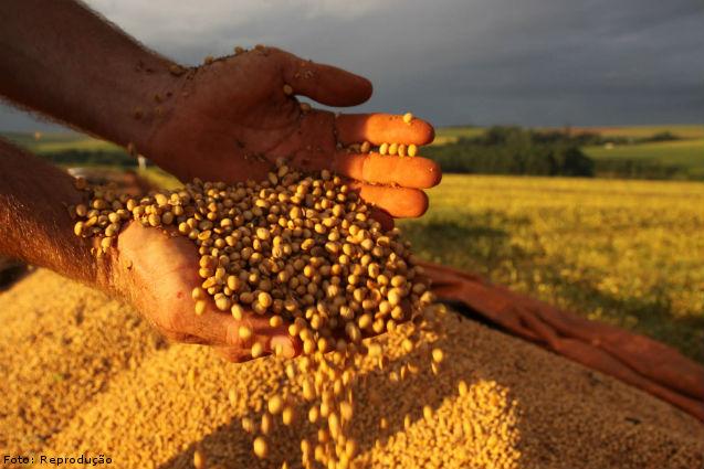 Abiove divulga sua previsão de soja no Brasil em 2016/17   Artigos Cursos CPT