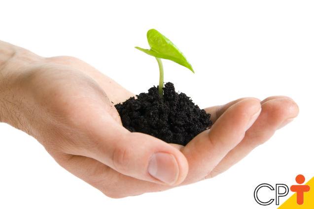 Fazer a análise química do solo é importante para a agricultura?   Artigos Cursos CPT