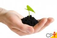 Fazer a análise química do solo é importante para a agricultura?