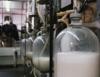 Aprenda Fácil Editora: Crescimento do setor leiteiro no Brasil
